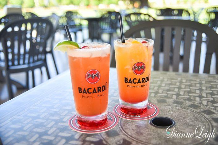 Bacardi Factory Tour | San Juan, Puerto Rico