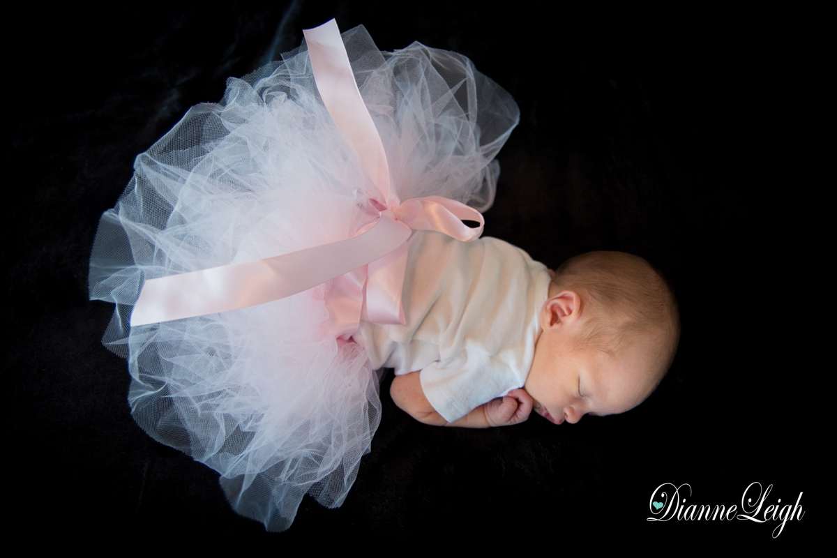 cypress newborn photographer meredith